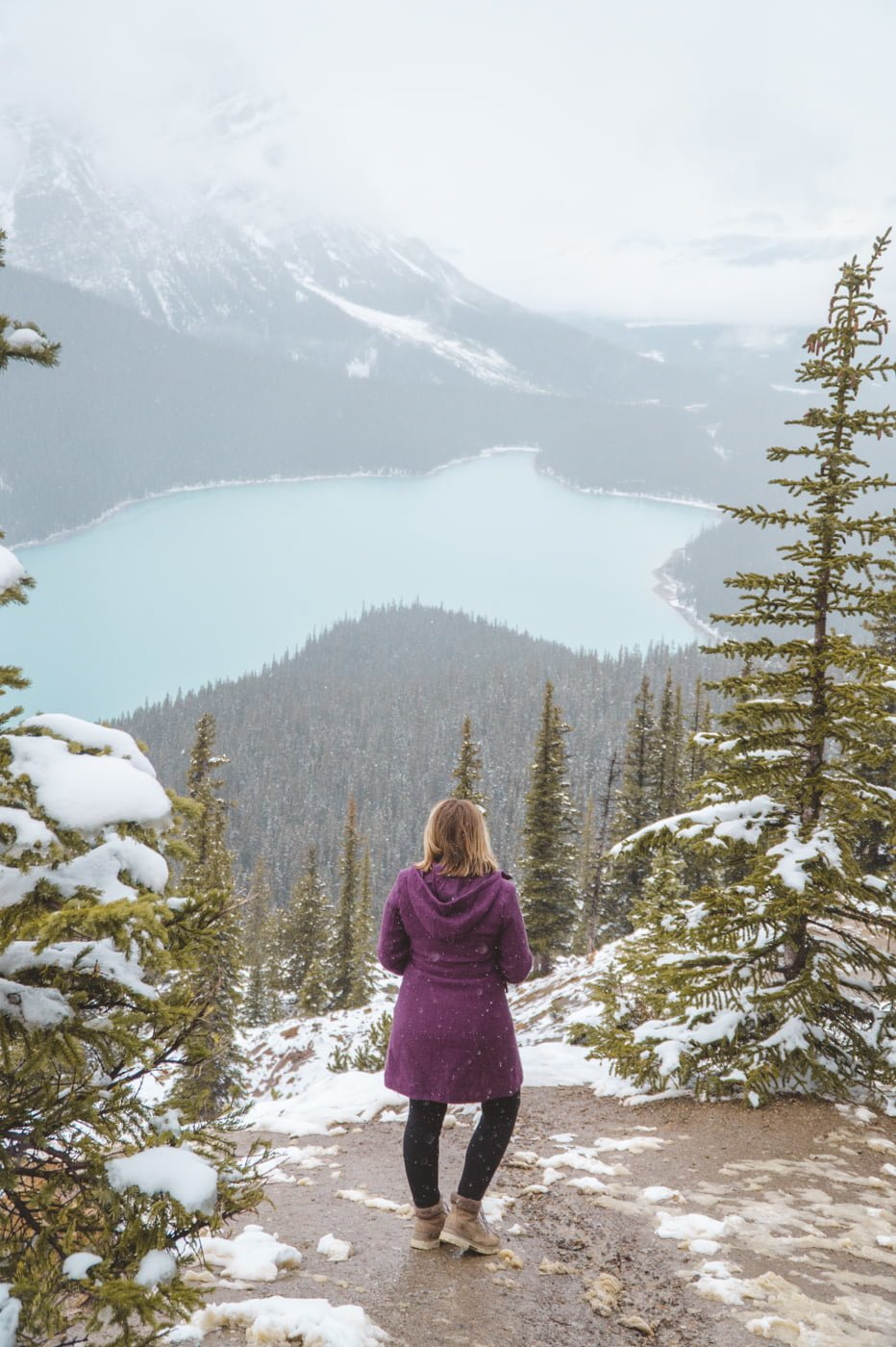 Admiring Peyto Lake, one of the best and prettiest lakes here (and one of the top reasons to travel to Banff National Park).