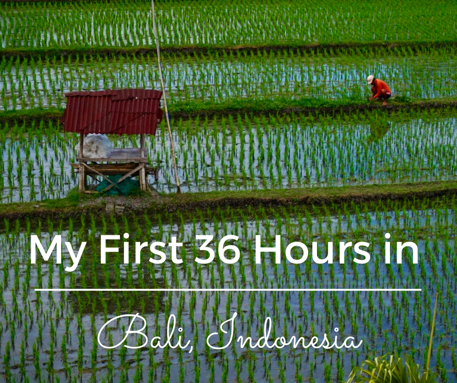 Arriving on the beautiful island of Bali for my first solo adventure was interesting, to say the least. Here's how my first 36 hours in Bali went.