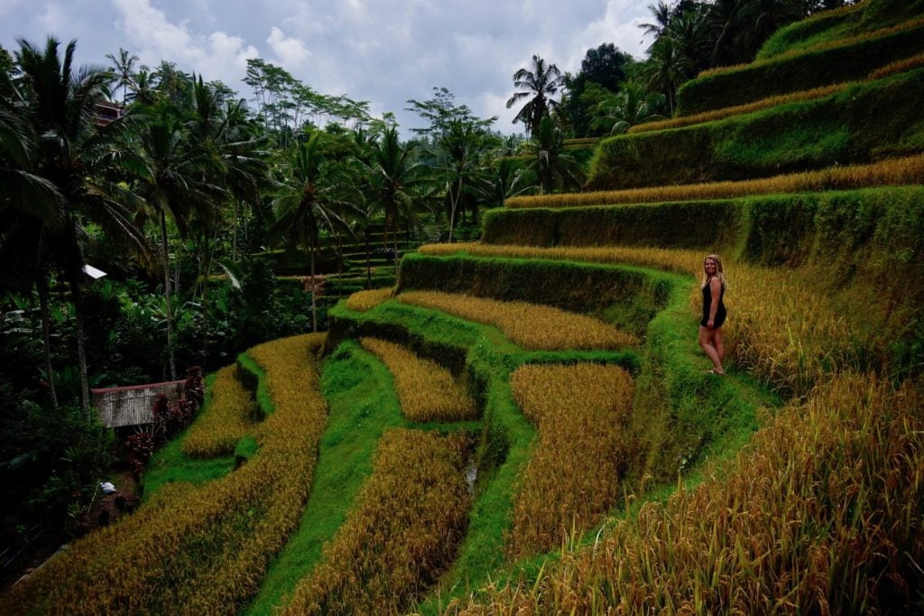 Exploring around Ubud, Bali for a day