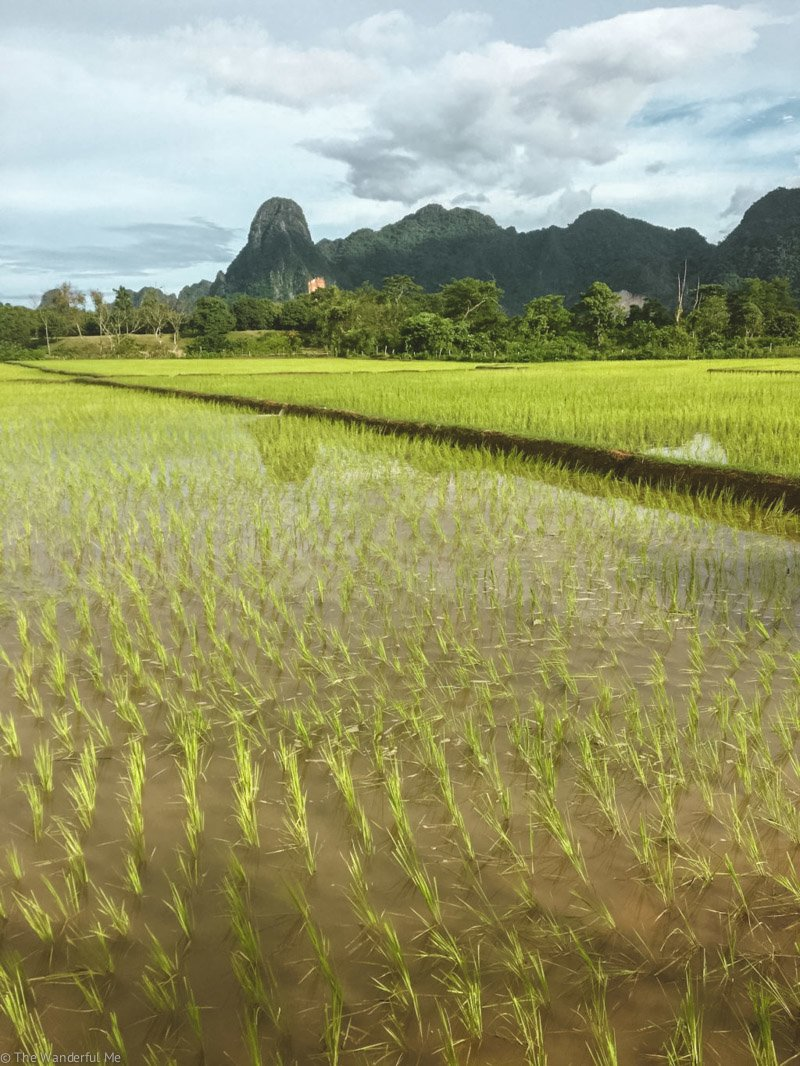 The Laos countryside you'll get to explore when riding around on motorbikes! It's pretty darn beautiful.