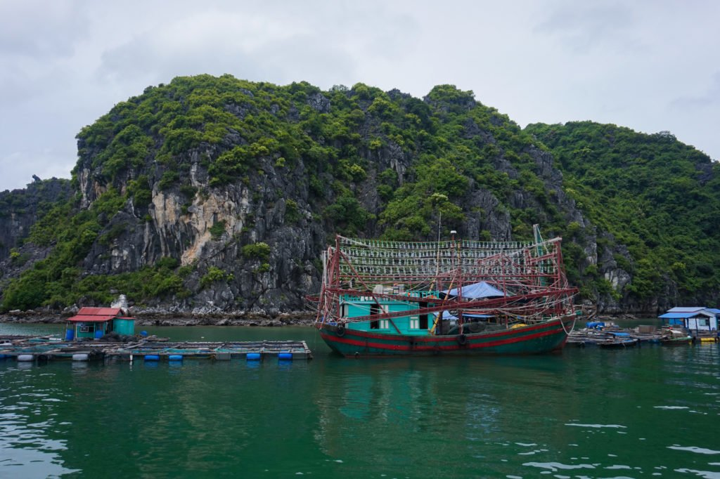 Halong Bay • 10 Incredible Experiences to Have in Vietnam | The Wanderful Me