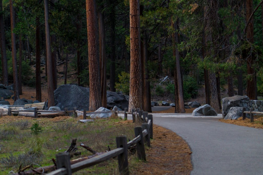 Trails at Yosemite NP • Useful Things to Know Before Visiting Yosemite and Sequoia in the Winter | The Wanderful Me