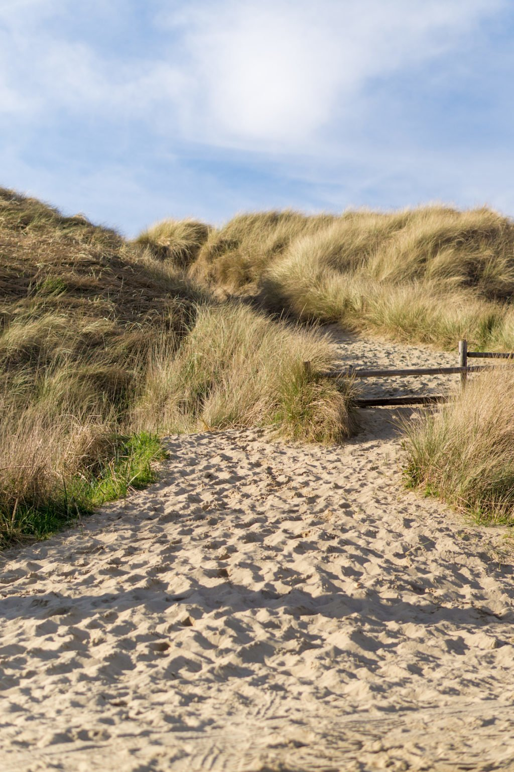 More Sand Dunes •25 Photos to Spark Your Visit to the Oregon Coast | The Wanderful Me