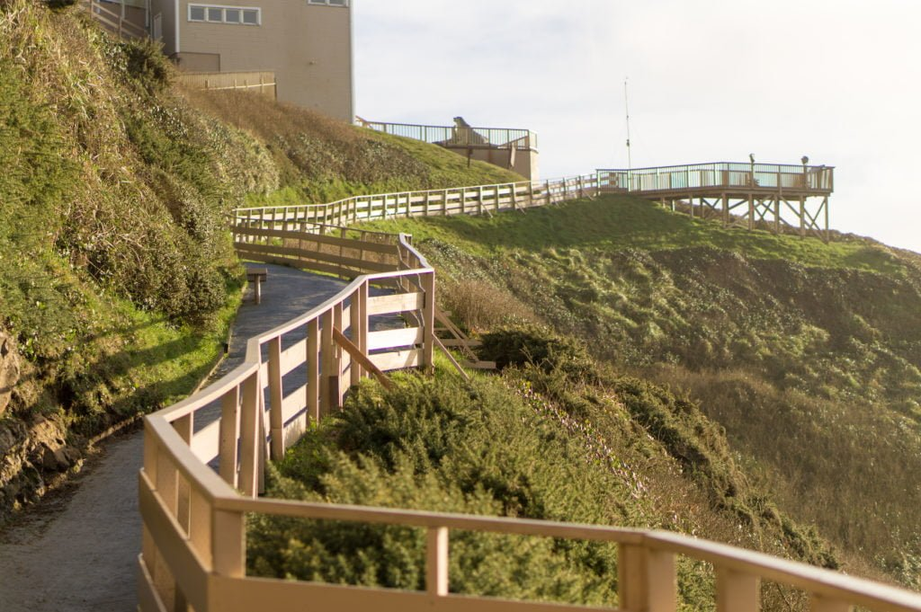 Coastline Walkway •25 Photos to Spark Your Visit to the Oregon Coast | The Wanderful Me