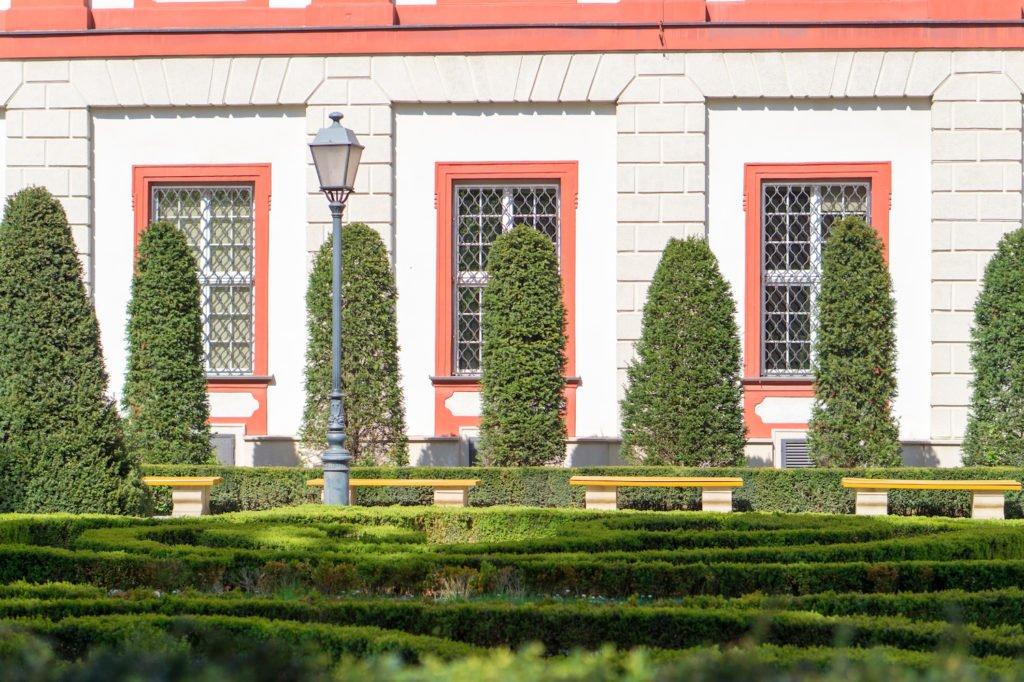 Beautiful library garden in Wroclaw •24 Hours in Wroclaw, Poland