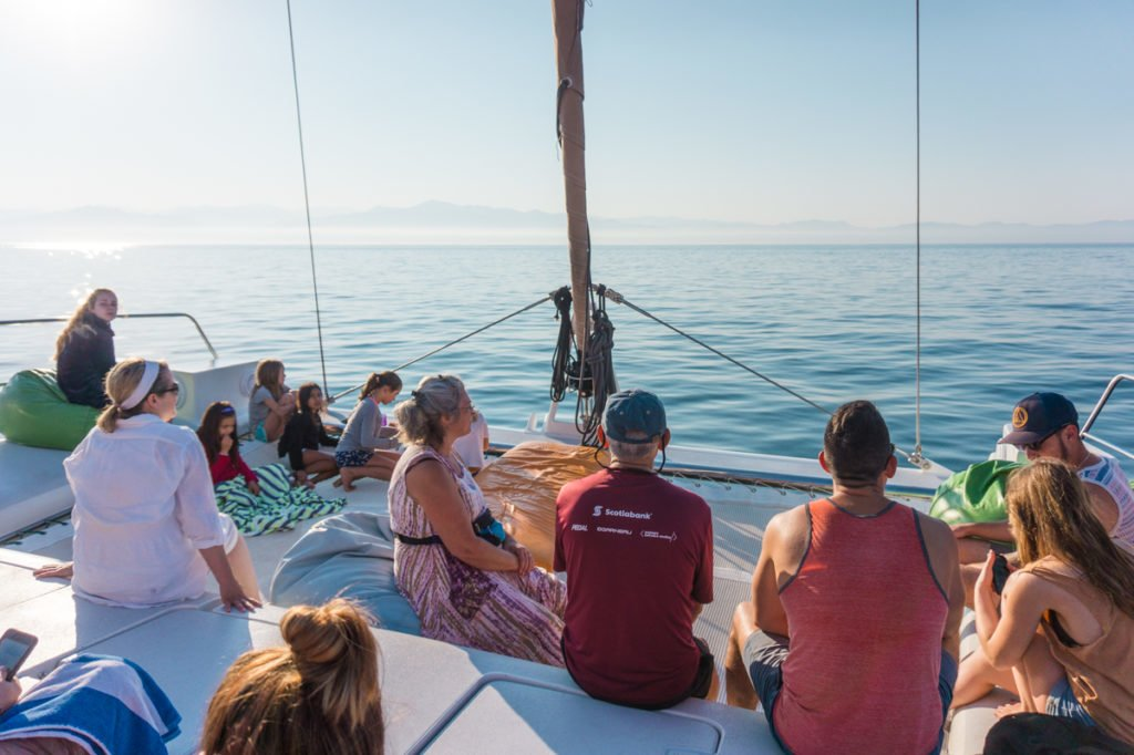 Ally Cat Catamaran •Ally Cat Boat Trip: Setting Sail in Puerto Vallarta, Mexico   The Wanderful Me