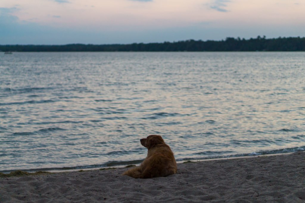 Summer in Minnesota is spent at the lake.