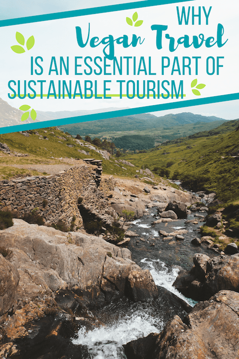 While many people focus on reducing their transportation emissions and supporting local communities, which are no doubt important, they forget one essential aspect... vegan travel. | #vegantravel #vegantourism #sustainabletourism #sustainabletravel #sustainability #travel #ecofriendly #environmentallyfriendly #ecofriendlytravel #traveltips #traveltricks