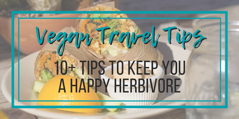 Vegan Travel Tips: 10+ Tips to Keep You a Happy Herbivore