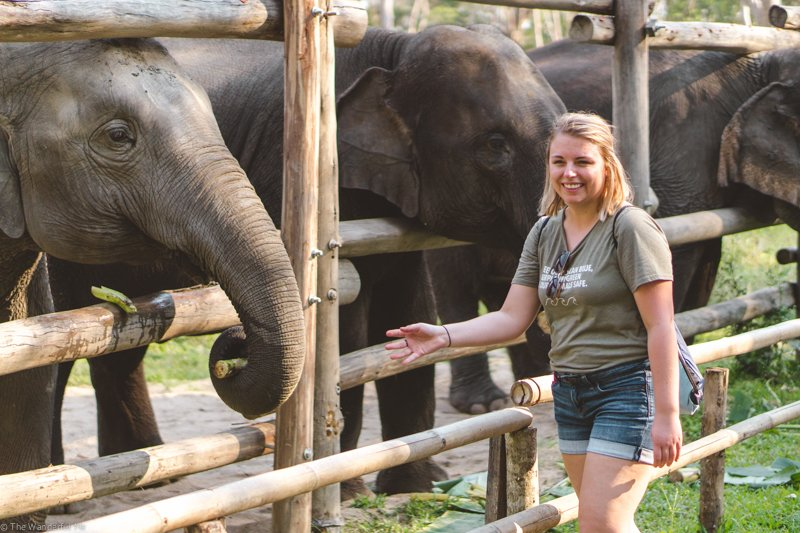 Sophie smiling like a fool because she's so darn happy to be spending the day at one of the most ethical elephant sanctuaries in Thailand!