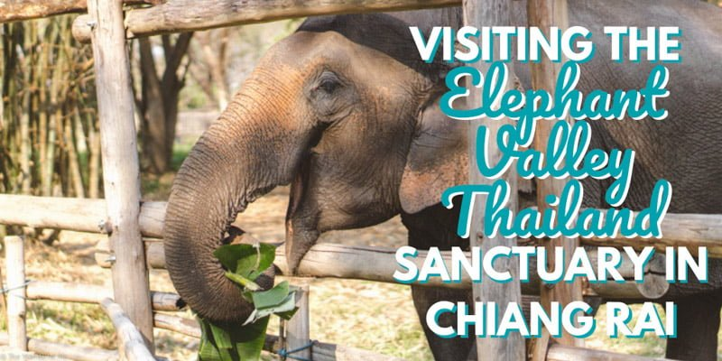 Visiting the Elephant Valley Thailand Sanctuary in Chiang Rai, Thailand
