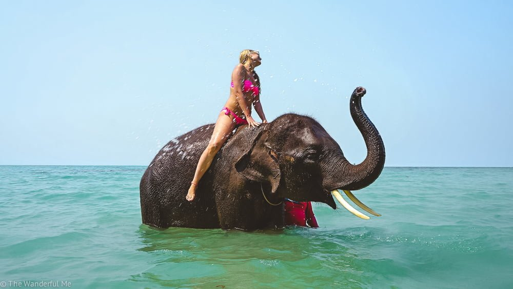 A girl riding an elephant, a truly unethical animal experience.