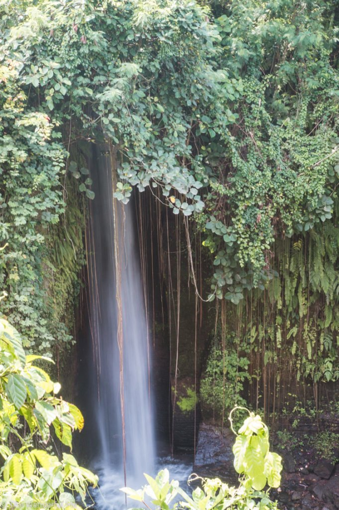 Don't miss out on any Bali waterfalls! There are TONS throughout the island to visit.