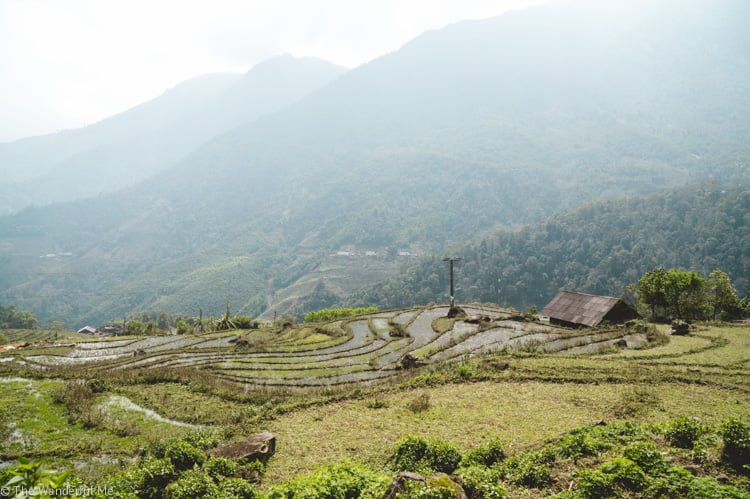Shimmering rice paddies and towering mountains make up the landscape in this photo of Sapa, Vietnam.