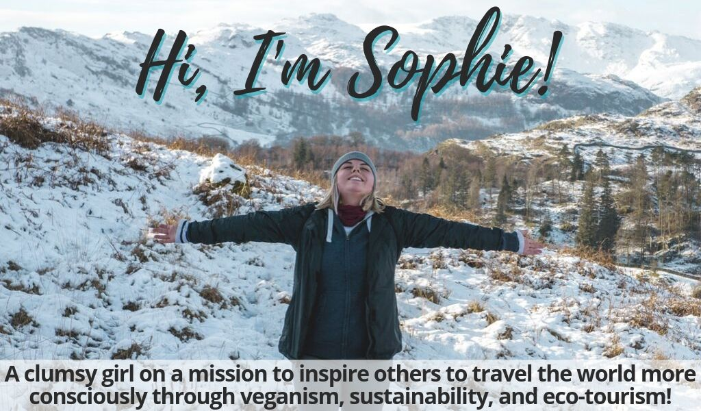 "Homepage image that states, ""Hi, I'm Sophie! A clumsy girl on a mission to inspire others to travel the world more consciously through veganism, sustainability, and eco-tourism!"