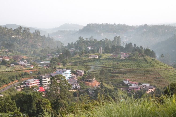 Sri Lanka views featuring rolling green tea fields, villages, mountains, and more.