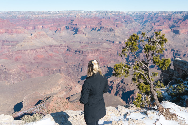 Sophie standing near the edge of a cliff at the Grand Canyon National Park.
